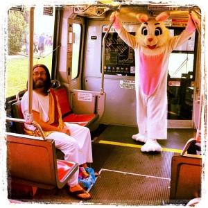jesus bunny